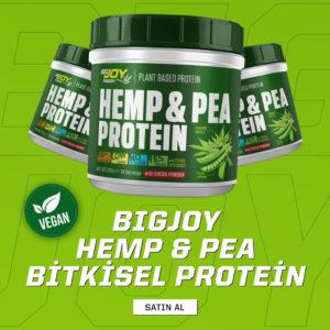 bigjoy vegan hemp pea protein